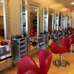 Salontarget Premiere Edition 9 Salon Interior With Mirrors